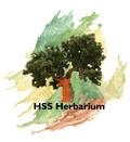 HSS-herbarium.jpg