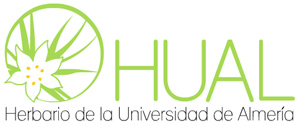 Hual-Herbario.jpg